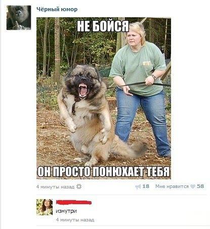 Юмор, Смешные комментарии из социальных сетей