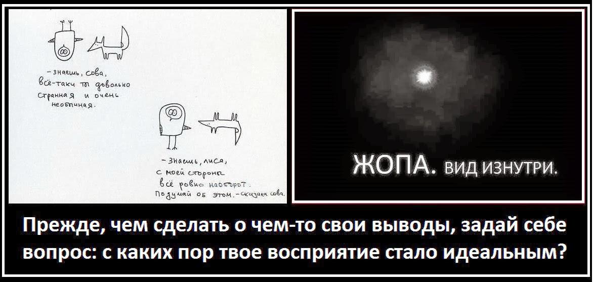 Как выглядит жопа из нутри фото фото 716-621