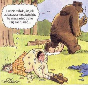 медведь трахнул мужика